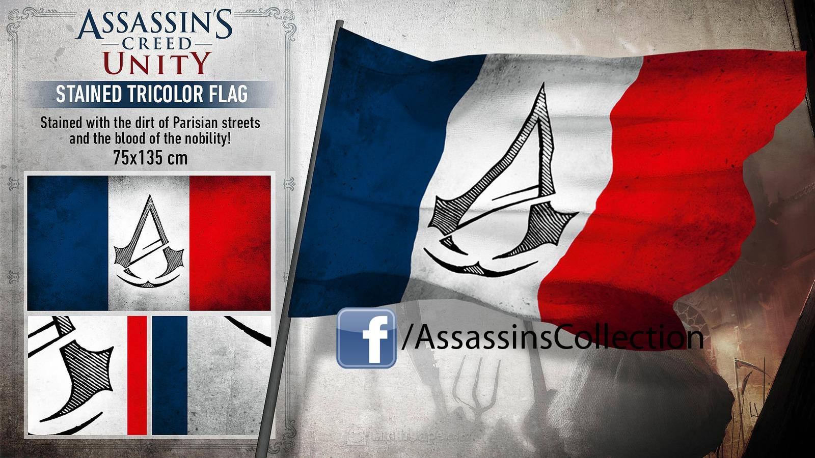 Assassin's Creed Unity Flag